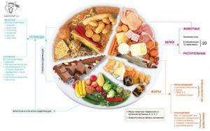Белки, жиры, углеводы. Продукты для сбалансированного питания.